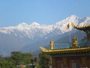 Himalayas, Deer Park Center, UP
